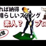 ゴルフの理想のスイングって何ですか?初心者は何を目指すべきなのか。